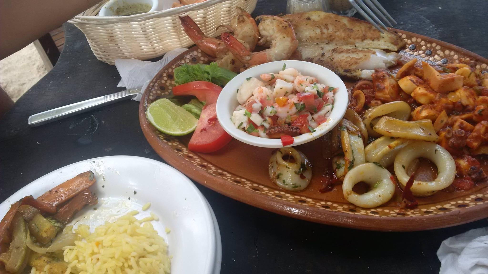 The best food is always fresh from the garden – Sensato Living